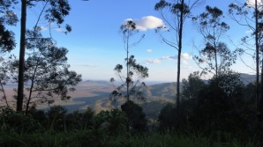 View from Wundanyi