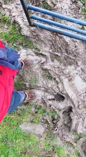2 mud again