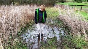 3 mud again